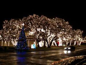 Limousine Tour of Holiday Lights